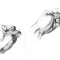 sketch23