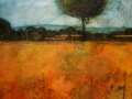 Field_of_wheat