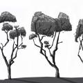 GraveyardTrees2