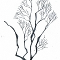 Vector_tree03