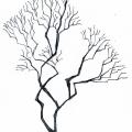 Vector_tree04