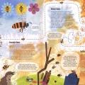 Taisce pollinators02l