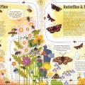 Taisce pollinators03l