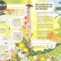 Taisce pollinators05l
