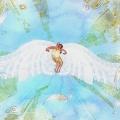 wings001 copy